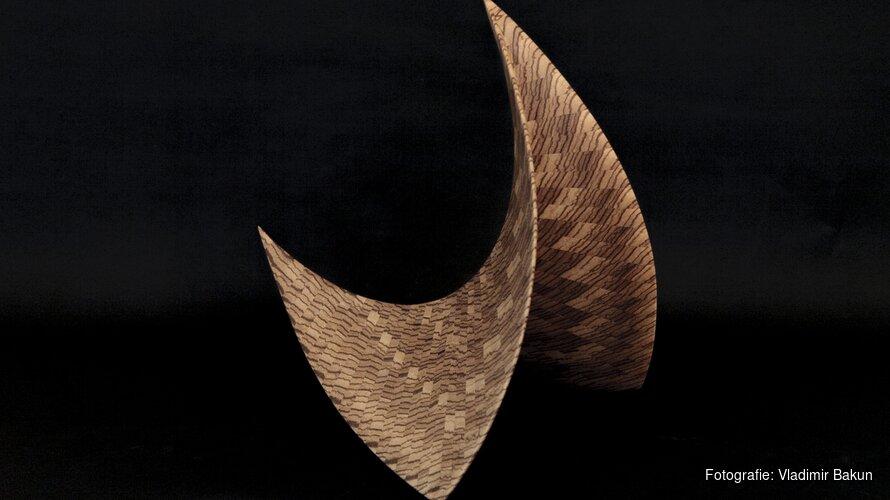 'Uit hout geboren' expositie in gemeentehuis