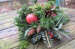 Maak je eigen kerststukje op kinderboerderij Dierendorp